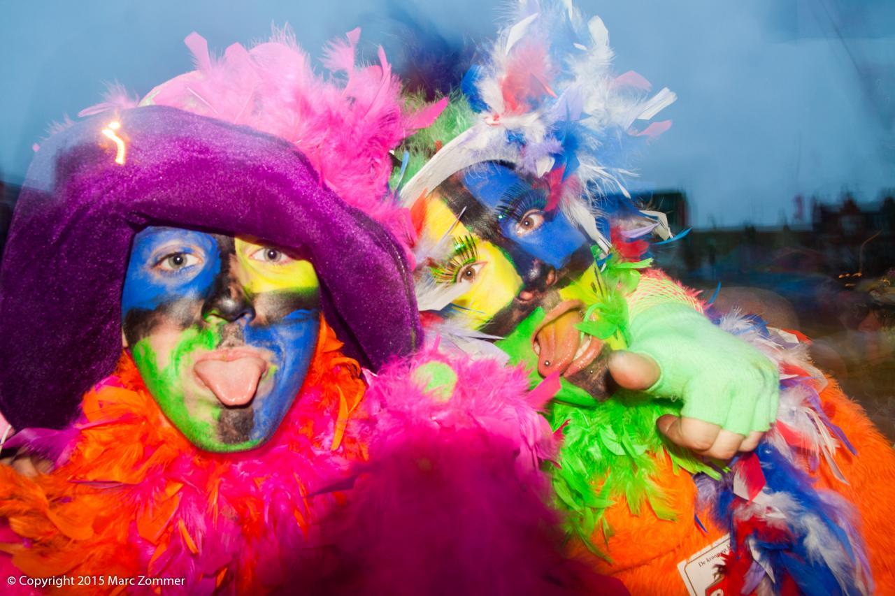Carnaval de Malo - 2015