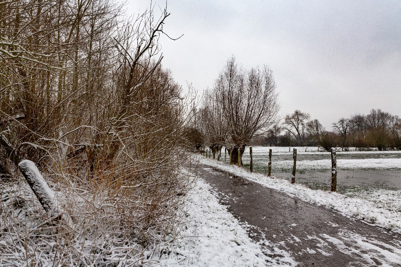 Baisieux sous la neige