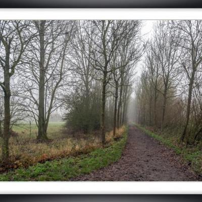 Brouillard ch py02a marc zommer photographies