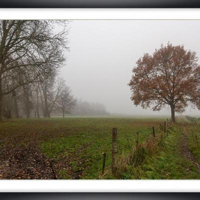 Brouillard ch py03a marc zommer photographies