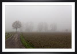 Brouillard ch py04a marc zommer photographies