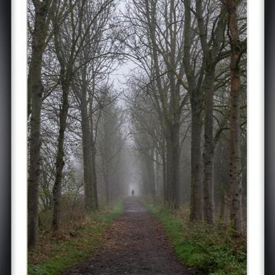 Brouillard cv py010a marc zommer photographies