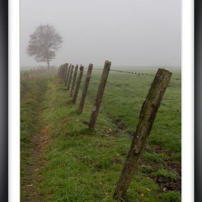 Brouillard cv py08a marc zommer photographies