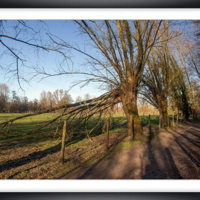 Ch py05a marc zommer photographies