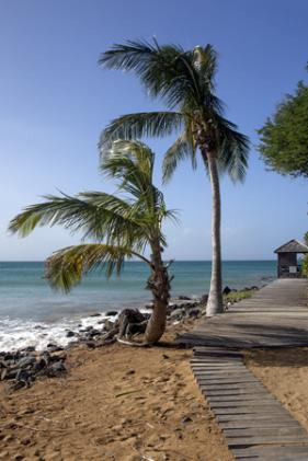 Guadeloupe marc zommer photographies