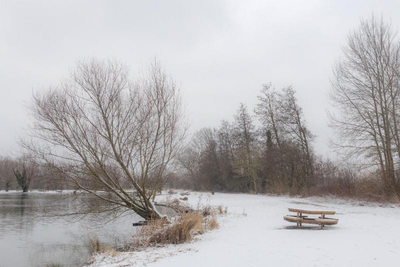 Parc des 6 Bonniers (Willems)